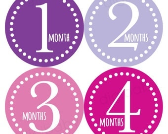 Purple Baby Month Stickers, Pink Baby Stickers, Monthly Milestone, Baby Monthly Sticker, Baby Shower Gift