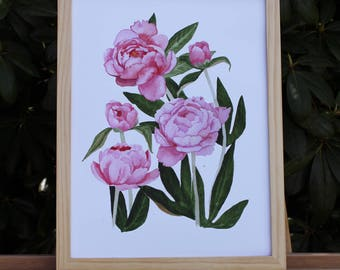 Peonies no.1 (Print Only)