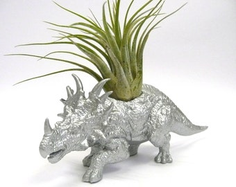 Silver Styracosaurus Dinosaur Planter with Air Plant // Coworker Gift // For Her // For Him