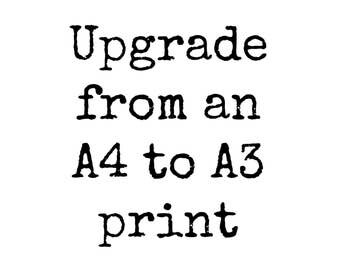Upgrade purchase from A4 to A3.