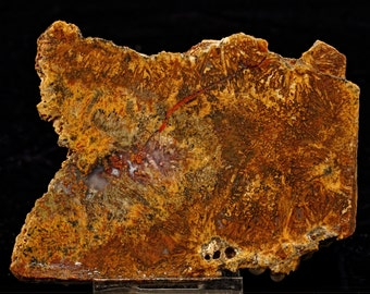 Lovely Mexican Sagenite Agate Slab