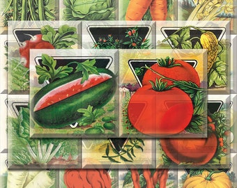 Card Seed Co Square Images Digital Collage Sheet Download