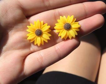 Sunflowers & Daisies