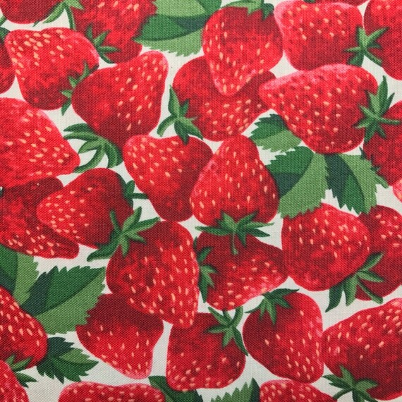 Strawberry Fold Over Clutch / Cross Body