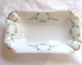 Vintage C.A. Altrohla Austrian China Dish with Dainty Blue Flowers