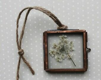 Miniature Flower Picture