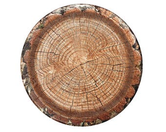 Tree Plates, Lumberjack Party Decorations, 8CT, 10 inch, Paper Plates, Woodland, Outdoors, Hunting, Thanksgiving, Camping, Wild One, Mens