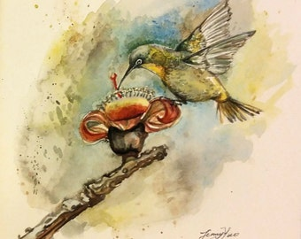 "Original Water color Painting, Humming Bird on flower, 1612123,  10""x8"""
