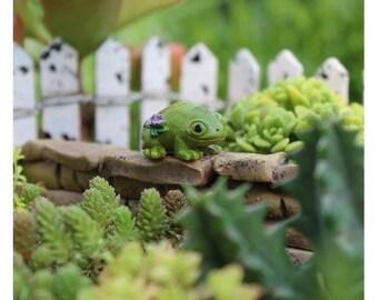 Fairy Garden  - Leo the Frog - Miniature