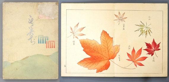 """1911, Japanese antique woodblock print book, Kubota Kinsen, """"Momiji(Tinted autumnal leaves)"""""""