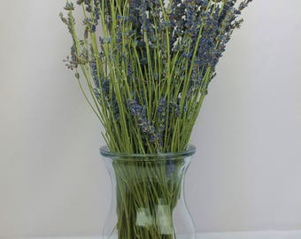 Dried lavender bundle, Lavender Favors, Lavender Flowers, Dried Flower, Dried Flower Arrangement, Dried Flower Bouquet, Dried Lavender Bunch