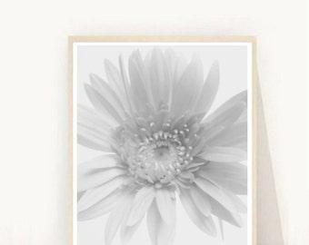 Flower Photograph, Printable Art, Flower Photo, Scandinavian Design, Botanical Art, Instant Download, Modern Wall Art, Home Decor