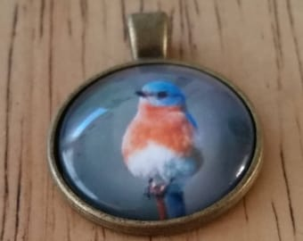 1 - Bronze - Glass Cabochon - Pendant - Necklace -Robin Bird - The Size is 36mm x 28mm