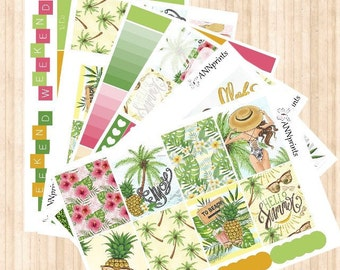 AP054 summertime weekly planner sticker kit erin condren happy planner