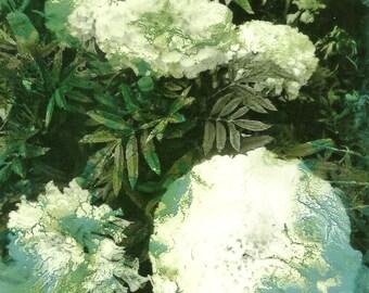 Marigold, Flower, Turquoise blue, Photo, Collage, Art, original