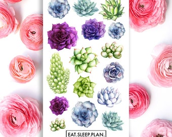 Succulent Planner Stickers - 16 Stickers - Planners - Font Stickers - Plant Succulent Stickers - Glossy Agenda Stickers Scrapbook Stickers