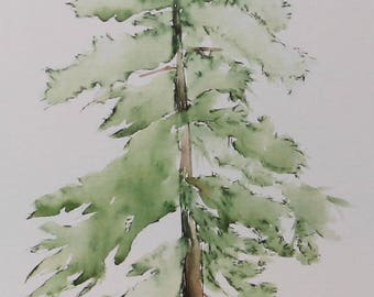"4""x6"" Greeting Card with Print of Original Watercolor and Ink Painting: Loblolly Pine Tree"