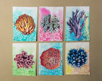 6 Postcards of Coral Illustrations