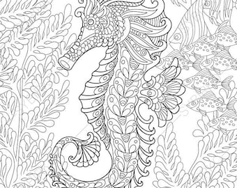 Adult Coloring Pages Seahorse Zentangle Doodle For Adults Digital Illustration