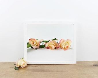 Peach Rose Photography Print / Photo / Wall Art / Home Decor / Printables / Printable Wall Art / Minimalist Digital Art