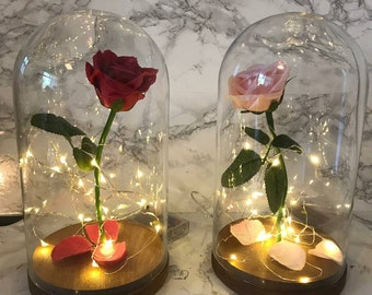 Rose light up domes