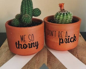 Small succulent planter//small plant pot//flower pot