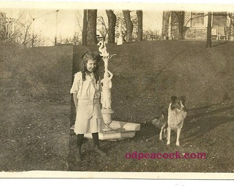 Cute Edwardian girl with pet collie vintage photo animal dog fountain swan outdoor vernacular