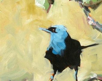 Chinese Bird Art, Blackbird Art, Decorative Wall Art, Black and Blue, Original Oil Painting, 11 x 14, Bird painting on Canvas, Free Shipping