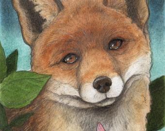Night Fox....Original 5x7 Illustration