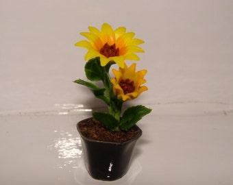 sunflower pots etsy