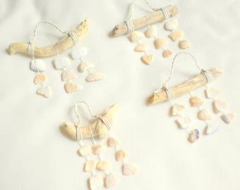 Shell ornament / seashell ornament / sea shell ornament / beach shell ornament