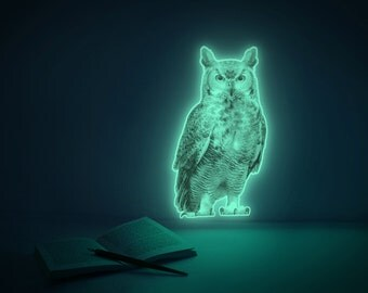 Moonlight Wisdom (glow in the dark owl night-light sticker)
