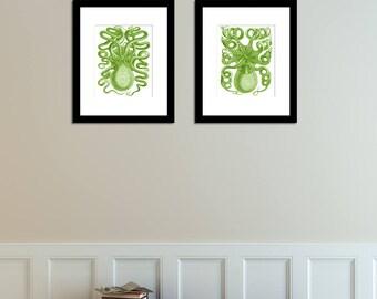 Octopus Print Set of 2, Octopus Art in Greenery Green, Octopus Posters, Nautical Beach Art, Octopus Wall Art, Coastal Art, Coastal Decor