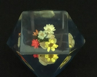 Vintage Acrylic Dry Flowers in Shells Geometric Paperweight   (LDT5)