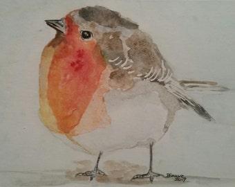 European Robin watercolor
