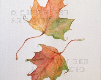 Sycamore painting, Autumn leaves, Botanical art, Botanical illustration, Botanical painting, Maple leaf picture, Autumn colour, Fall color