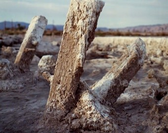 "Salton Sea, Landscape photography, abandoned dock salton sea inland southern california wall art, color photograph ""Frosting"""