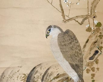 Antique Japanese watercolor painting scroll fine painted one hawk on branch one in current w. artist signed and sealed