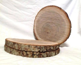 """10 Natural Wood Log Slices 10"""" to 12"""" Crafts Rustic Wedding Cabin Décor Disk"""