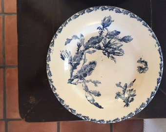 Set of 12 Antique Vintage French Plates Faience GIEN 19th c, model CACTUS.