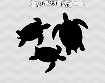 Turtle SVG DXF files Turtles svg Turtle clipart png Animals Svg Files for Silhouette Studio Cricut downloads Cricut files Svg designs