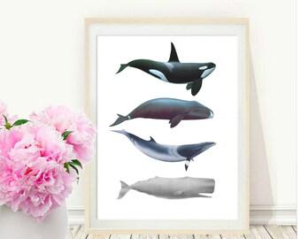 Whale Art, Whales Print, Printable Art, Beach House Decor,Coastal Decor, Whale Wall art, Wall Decor,  Digital Download