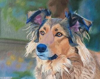 Collie dog portrait original oil painting
