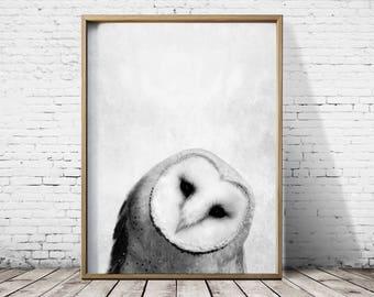 Bird Print Owl Print - Woodlands Print - Owl Wall Art - Owl Poster - Owl Art -  Animal Prints - Owl Decor