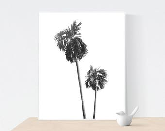 Palm Tree Print, Palm Tree Photo, Tropical Wall Art, California Print, Palm Tree Wall Art,Printable, Black and White Photography