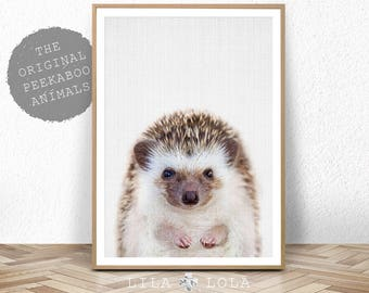 Hedgehog Print, Woodland Animal Wall Art, Nursery Decor, Peekaboo Animal, Printable Digital Download, Large Poster, Baby Room Art Print