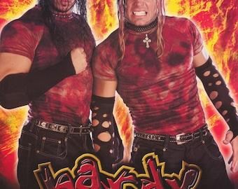 Wrestling WWF Hardy Boyz Poster