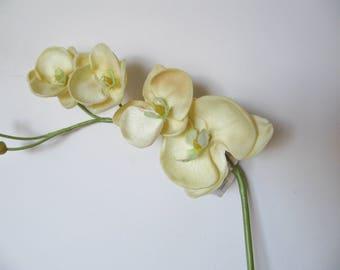 Real Touch Vanda Orchid White/Green/Magenta Artificial Flowers/Floral Arrangement/Centerpiece/Home Decor