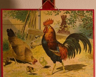 Vintage  Old Print on cardboard  Our Chickens School Chart Lithograph