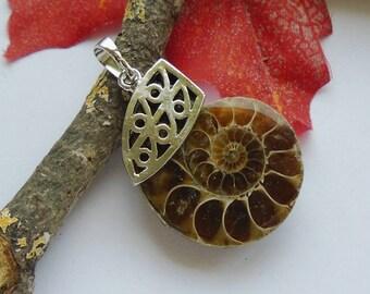 Ammonite fossil, snail, Brown, charm, pendant, silver plated, charm, Talisman